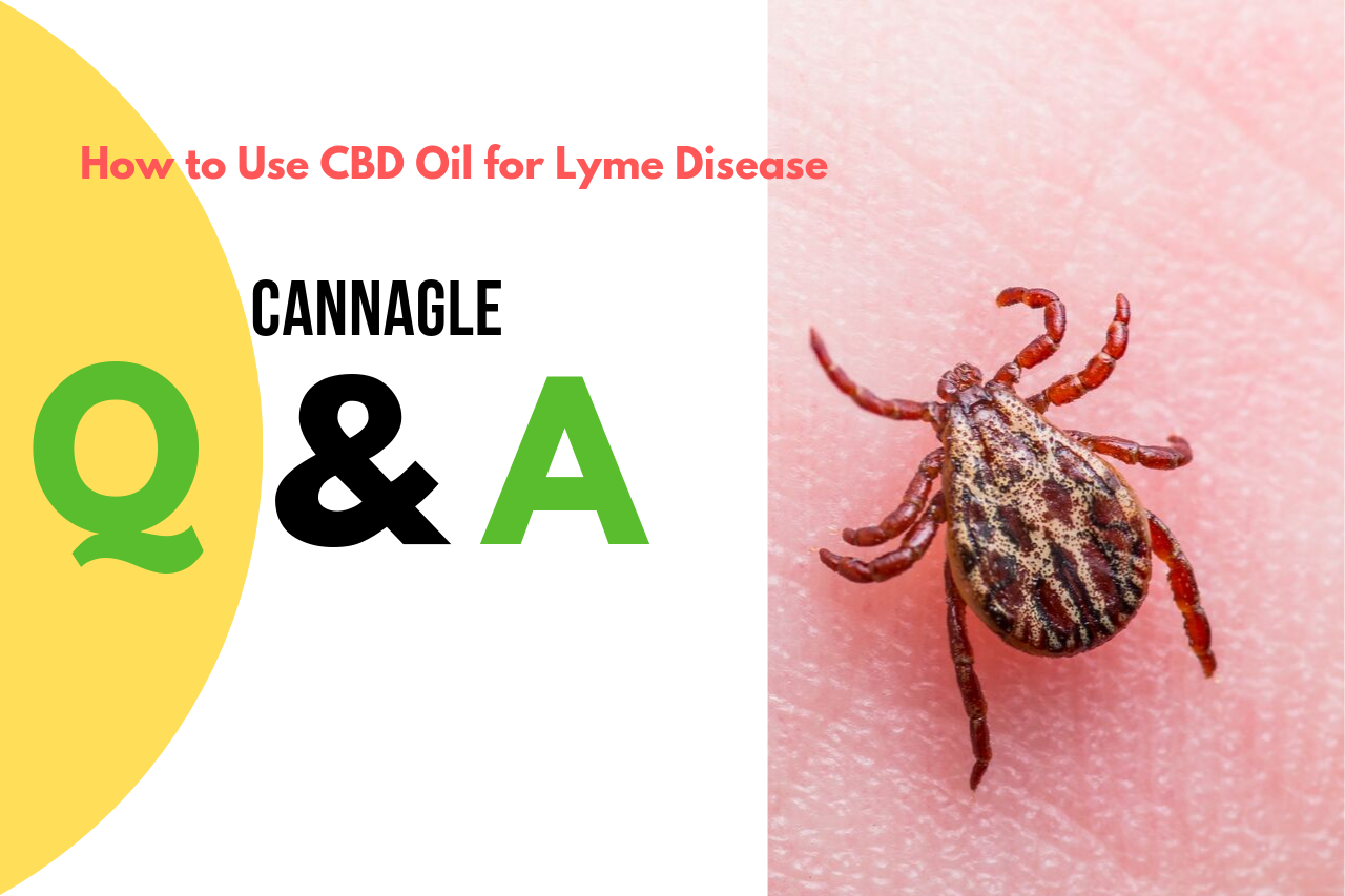 How to Use CBD Oil for Lyme Disease