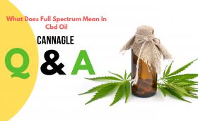 What Does Full Spectrum Mean In Cbd Oil