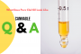 What Does Pure Cbd Oil Look Like